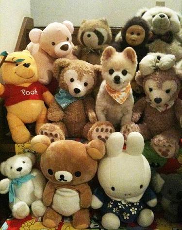 1hund och leksaker