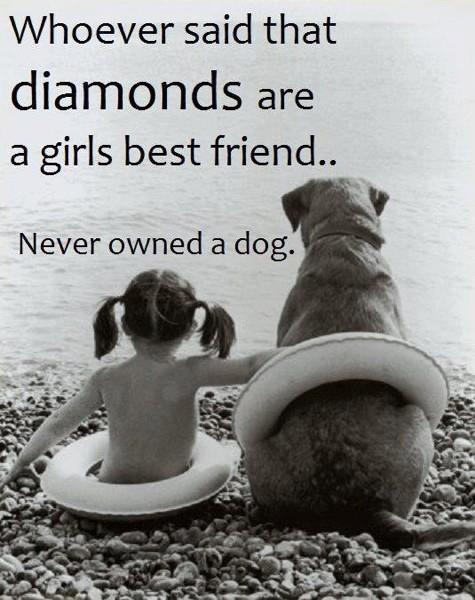 flickas bästa vän