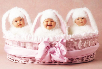 rabbit babies anne geddes