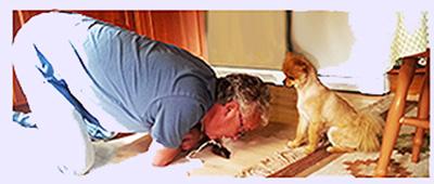 Seth ger allt för varje hund