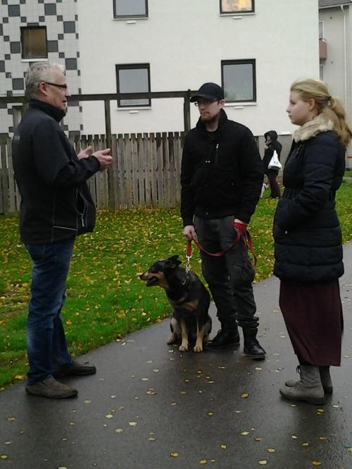 Rådslag mellan Seth, Jonas och Tove efter hundmötesträningen