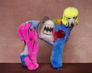 hund gua2