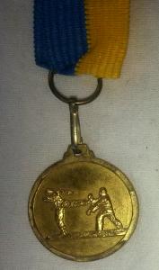 Seth Sjöblom, DM, guldmedalj, lag Dalarna, Karate - från ca. 20-årsåldern. Vinst mot Stockholm
