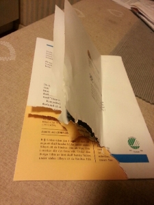 Dog pamflett bak