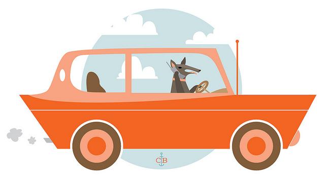 dog-in-car-cartoon