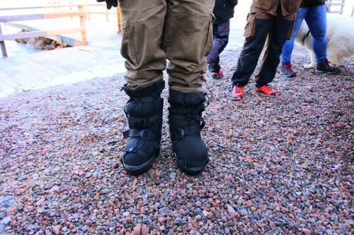 De arktiska bootsen från Alaska