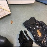 Göteborg - hund förgiftad SPRID varning